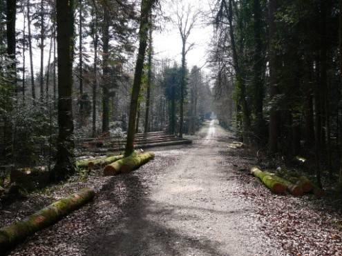 Chemin du Jura, Porrentruy - St-Ursanne | Jura Tourismus